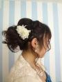 om_haircoorde_033