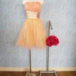ao_nr_dress_253