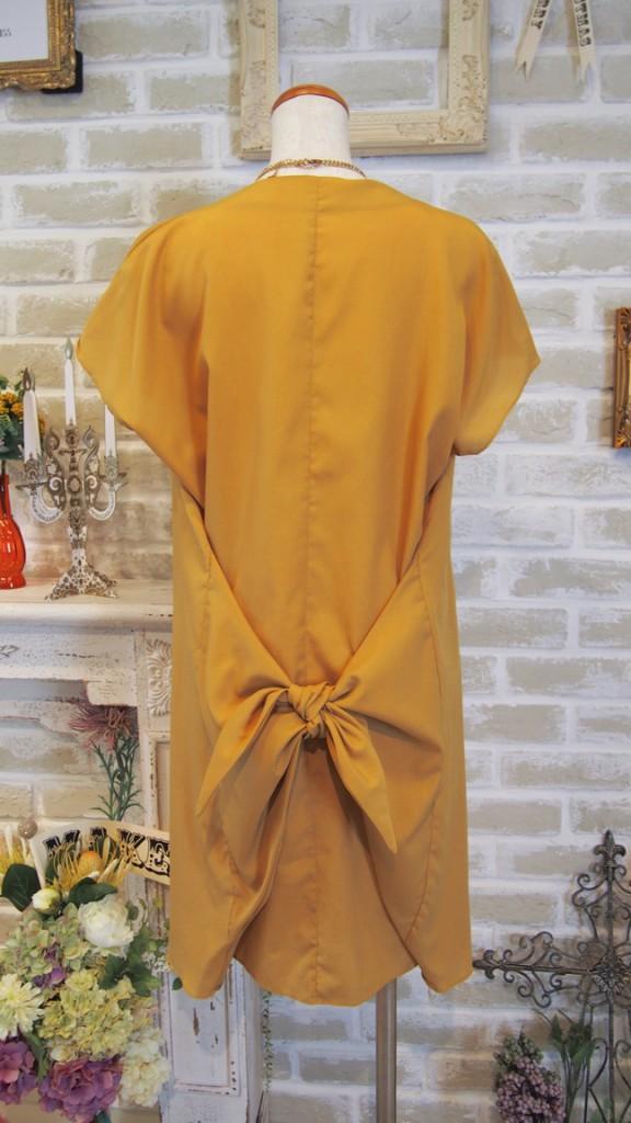 nr_dress_163
