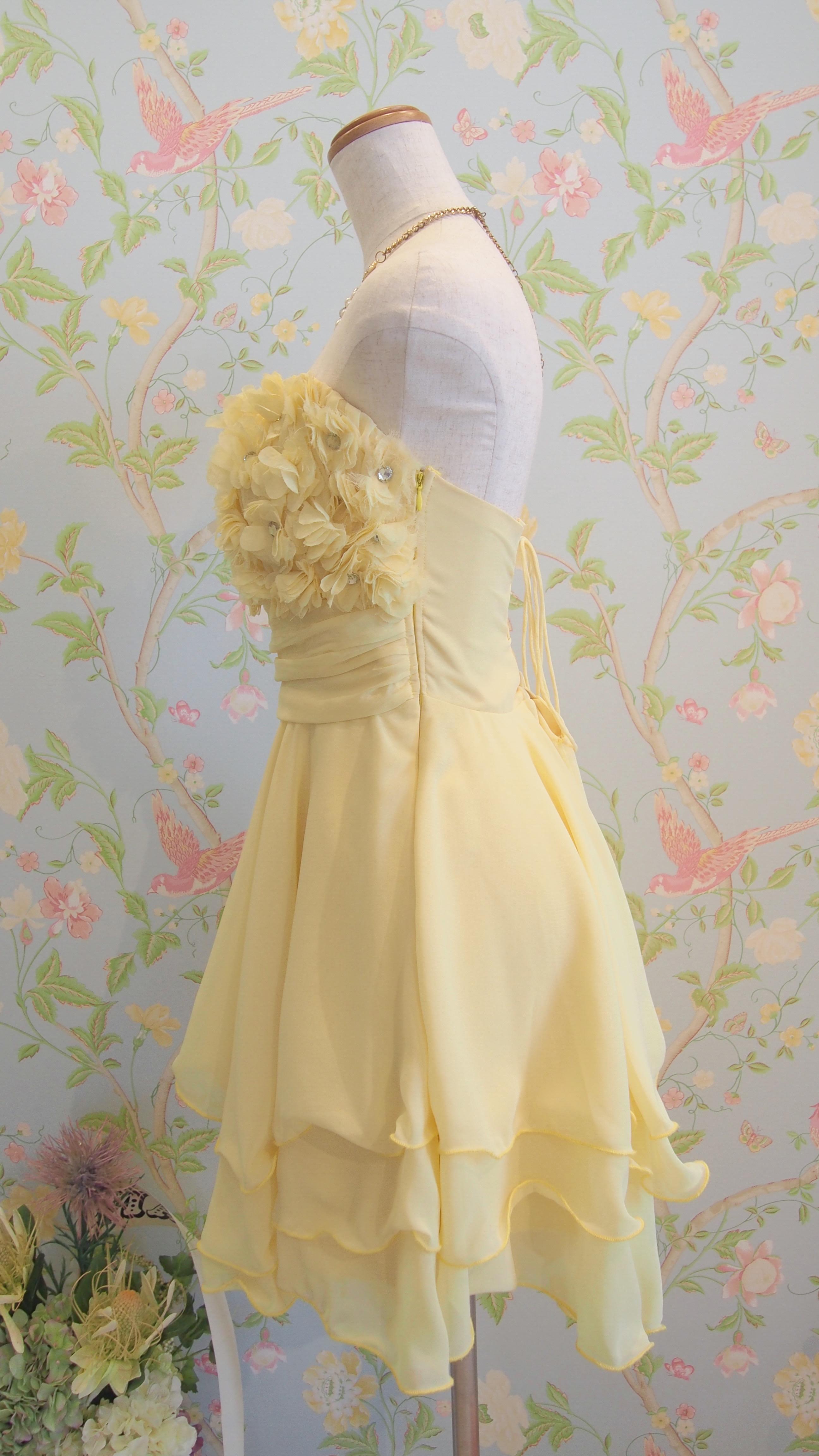 nr_dress_345